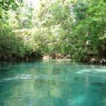 Nationalpark Florida