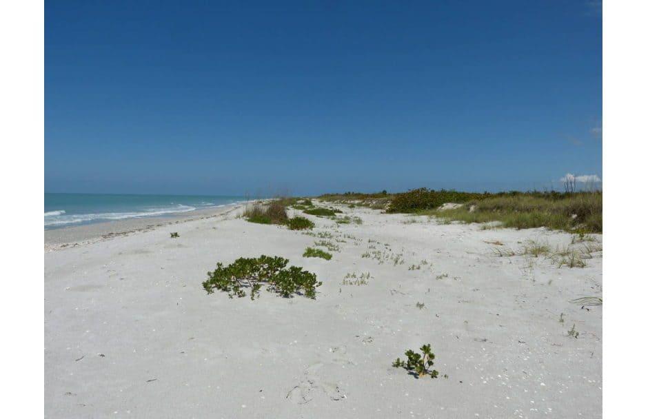Captiva Beach auf Captiva Island Florida