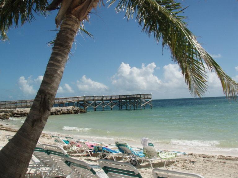 Florida Strand mit Palme