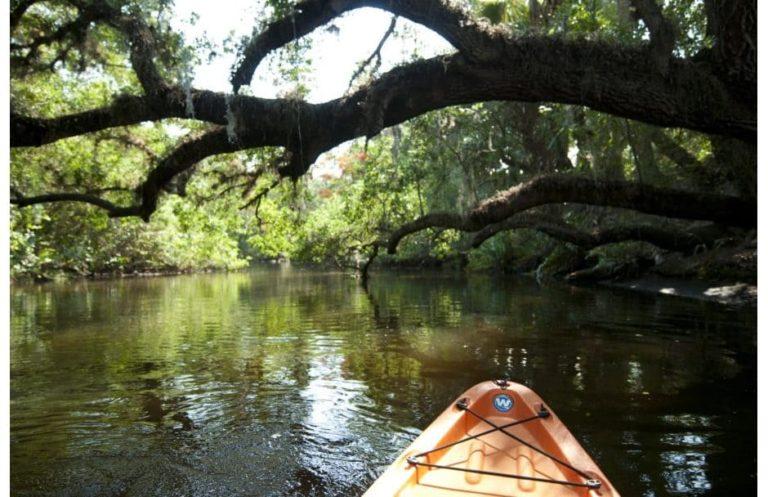 Four Mile Cove Ecological Preserve Florida