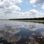 Myakka River State Park Florida