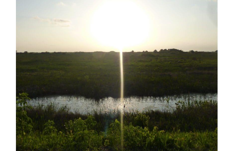 Pine Island National Wildlife Refuge Florida