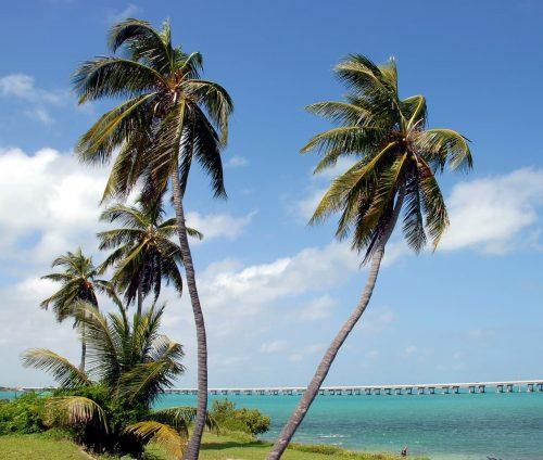 Palemn Florida